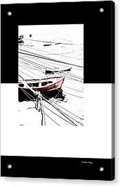 Albatros Acrylic Print by Xoanxo Cespon