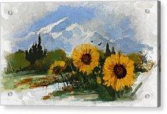 Alberta Landscape 001 Acrylic Print by Mahnoor Shah