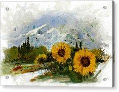 Alberta Landscape 1b Acrylic Print by Mahnoor Shah