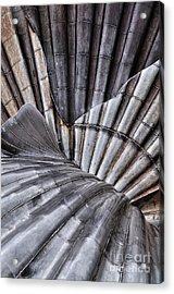 Aldeburgh Shell Abstract Acrylic Print