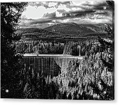 Acrylic Print featuring the photograph Alder Dam Near Mt Rainer Wa by Ron Roberts