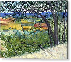 Acrylic Print featuring the painting Alexander Valley Vinyards by Asha Carolyn Young