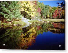 Algonquin Reflection Acrylic Print