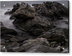 Alien Landscape Acrylic Print by Andrew Pacheco