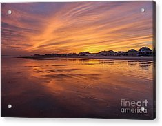 Alive With Color Acrylic Print