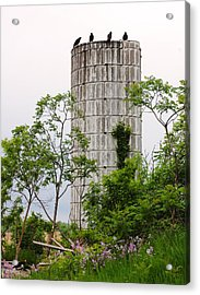 All Along The Silo Acrylic Print