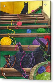 All Caught Up Acrylic Print by Catherine G McElroy