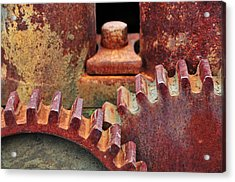 All Geared Up Acrylic Print by Mike Martin