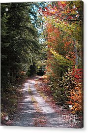All Roads Lead Here Acrylic Print by Linda Marcille