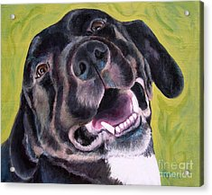 All Smiles Black Dog Acrylic Print