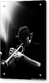 All That Jazz Acrylic Print by Sheryl Thomas
