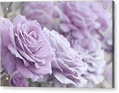 Acrylic Print featuring the photograph All The Soft Violet Roses by Jennie Marie Schell