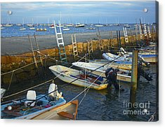 All Tied Up In Mattapoisett Acrylic Print by Amazing Jules