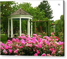 Allentown Pa Gross Memorial Rose Gardens Acrylic Print by Jacqueline M Lewis