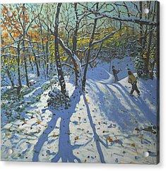 Allestree Park Woods November Acrylic Print by Andrew Macara