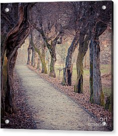 Alley - Square Acrylic Print by Hannes Cmarits