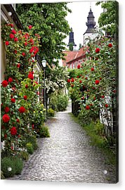 Alley Of Roses Acrylic Print