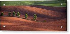 Allley Acrylic Print by Peter Svoboda, Mqep