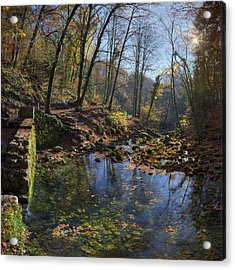 Allondon River Source Acrylic Print by Patrick Jacquet