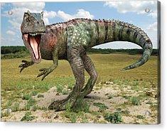 Allosaurus Dinosaur Acrylic Print