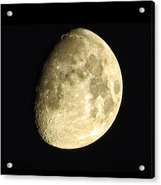Acrylic Print featuring the photograph Almost Blue Moon by Nikki McInnes