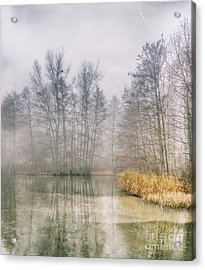 Acrylic Print featuring the photograph Almost Frozen Almost Winter by Maciej Markiewicz