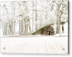 Almost Gone Acrylic Print by Jean Noren