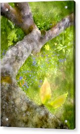 Aloft Acrylic Print by Richard Piper
