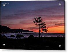 Alone At Sunset Acrylic Print
