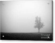 Alone In The Fog - Bw Acrylic Print by Hannes Cmarits