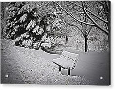 Acrylic Print featuring the photograph Alone In The Park.... by Deborah Klubertanz