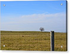 Acrylic Print featuring the photograph Alone Or Standing Out by Cathy Shiflett