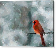Alone Red Bird Acrylic Print