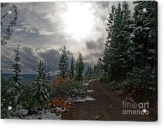 Along Ridge Road Acrylic Print by Cari Gesch