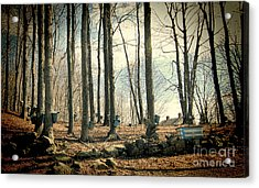 Along The Back Roads Acrylic Print by K Hines