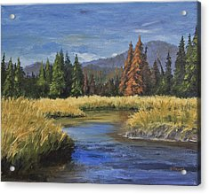 Along The Big Thompson Acrylic Print by Bev Finger