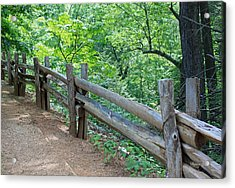 Along The Blue Ridge Parkway IIi Acrylic Print by Suzanne Gaff