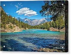 Along The Bow River Acrylic Print by Bob and Nancy Kendrick