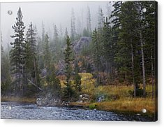 Along The Gibbon In Fall Acrylic Print