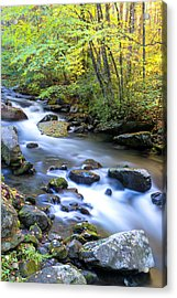 Along The Oconaluftee River Acrylic Print by Andres Leon