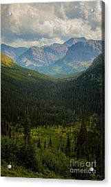 Along The Path To Iceburg 18 Acrylic Print by Natural Focal Point Photography