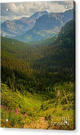 Along The Path To Iceburg Lake 19 Acrylic Print by Natural Focal Point Photography