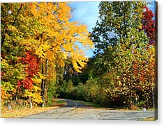 Acrylic Print featuring the photograph Along The Road 2 by Kathryn Meyer