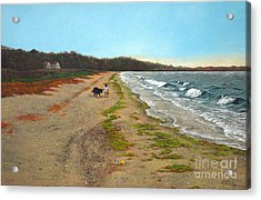 Along The Shore In Hyde Hole Beach Rhode Island Acrylic Print by Christopher Shellhammer