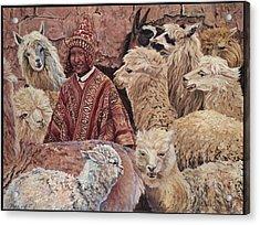 Alpaca Shepherd Acrylic Print