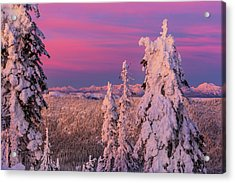 Alpenglow Light Over The Whitefish Acrylic Print by Chuck Haney