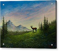 Alpine Beauty Acrylic Print by C Steele