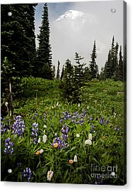 Alpine Beauty Acrylic Print by Karen Lee Ensley