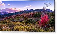 Alpine Fall Acrylic Print by Chad Dutson