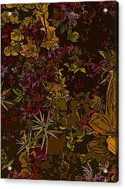 Alpine Groundcover Acrylic Print